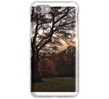 View from a hill iPhone Case/Skin