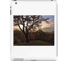 View from a hill iPad Case/Skin
