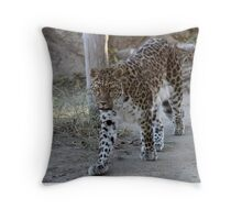 The beautiful magestic Leopard...... Throw Pillow