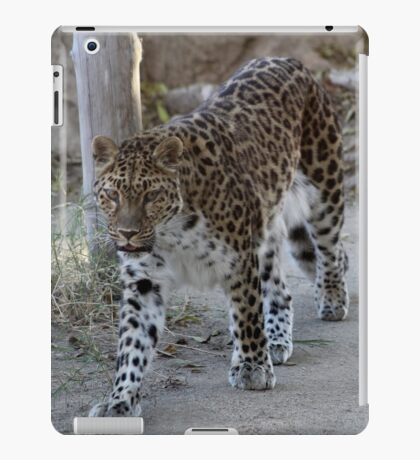 The beautiful magestic Leopard...... iPad Case/Skin