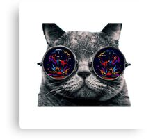 cat maxres Canvas Print