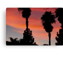 desert sunset - socal desert 2016 Canvas Print