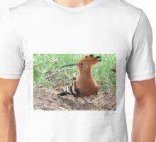 Extravagant Hoopoe  Unisex T-Shirt