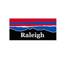 Raleigh Red White and Blue Photographic Print