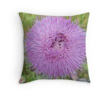 Flower with purple and pink spiked petals Throw Pillow