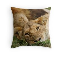 dreamy lioness Throw Pillow
