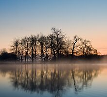A Winters Morning by imagejournal
