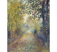 Auguste Renoir - In the Woods  1880 Impressionism  Landscape Photographic Print