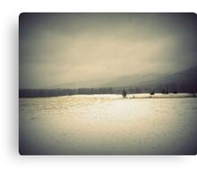 Winter Field Canvas Print