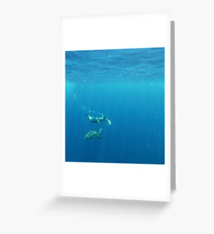 Snorkling - Philippines Greeting Card