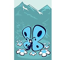 blue mountain butterfly Photographic Print
