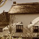 Old Cottage by Irene  Burdell