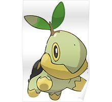 Pokemon Greengrass Poster