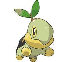 Pokemon Greengrass Photographic Print