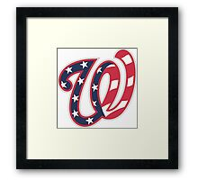 THE WASHINGTON NATIONALS Framed Print