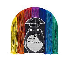 totoro rainbow rain Photographic Print