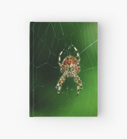 spider and web Hardcover Journal