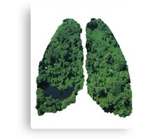 Natural lungs Canvas Print
