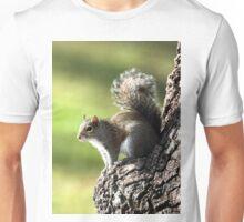 GREY SQUIRREL Unisex T-Shirt