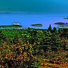 Autumn above Frenchman's Bay by Nancy Richard