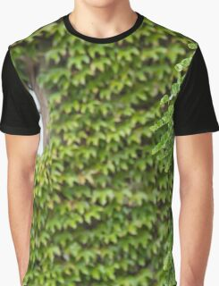 Green Curtains Graphic T-Shirt