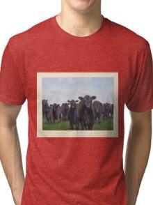 9 black cows: the Court Tri-blend T-Shirt