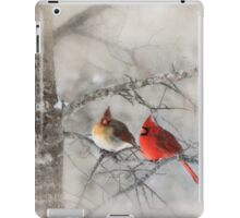 Waiting for Spring iPad Case/Skin