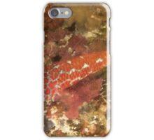 Lantana Pygmygoby iPhone Case/Skin