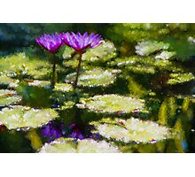 Waterlilies Impressions – Purple Duo Shimmer Photographic Print