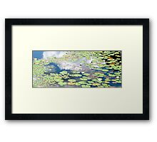 Daydreams and Lily Ponds Framed Print