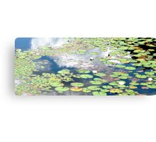 Daydreams and Lily Ponds Canvas Print