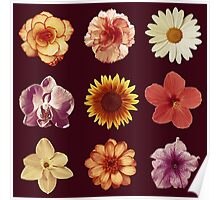 Floral Pattern Red Poster