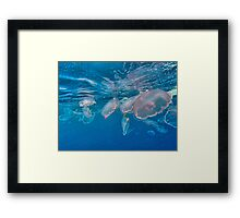 Moon Jelly Invasion Framed Print