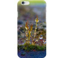 Macro Moss Grass 2 iPhone Case/Skin