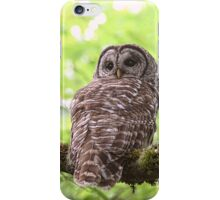 Hoot Owl in the Forest iPhone Case/Skin