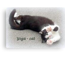 Yoga - Cat Metal Print