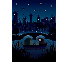 Hedgehogs in the night Photographic Print