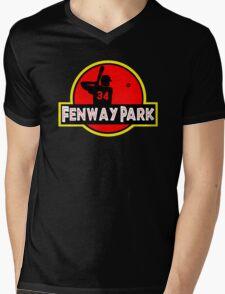 Fenway Park Mens V-Neck T-Shirt