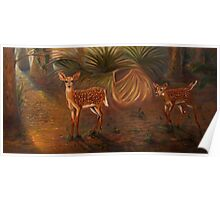 Fawns in the forest Poster