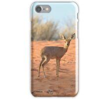 Dik-dik antelope iPhone Case/Skin