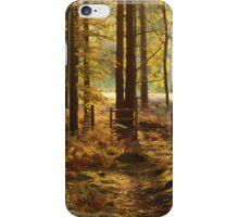 Stile In Autumn Woods iPhone Case/Skin