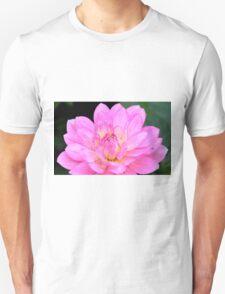 Pink Splendor Unisex T-Shirt