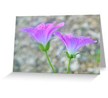 Purple Flora Majesty Greeting Card