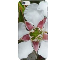 Tea Tree Close-up iPhone Case/Skin