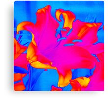 Bright Multi-Coloured Abstract Lily Canvas Print