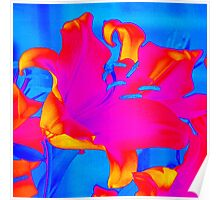 Bright Multi-Coloured Abstract Lily Poster