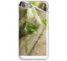 Little Lanscape iPhone Case/Skin