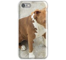 Pit Bull With Closed Eyes iPhone Case/Skin