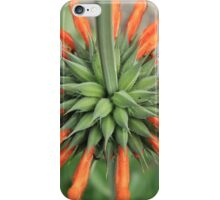 Orange Blossoms on a Wildflower iPhone Case/Skin
