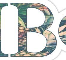 Pi Beta Phi - Pineapple Sticker